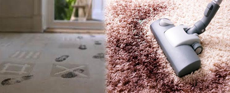 manchas que hay que dejar secar en la alfombra antes de limpiarla
