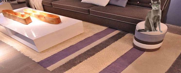 quitar pelos de gato de una alfombra frizada